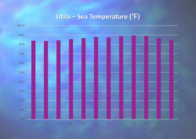 Utila - Annual Sea Temperature